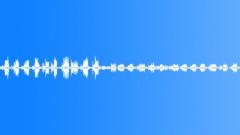 Birdsong 1 - sound effect