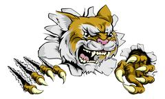 Angry wildcat sports mascot - stock illustration