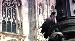 Pigeons near Milan Cathedral Duomo Milano, 4k,real time Stock Footage