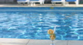 Cocktail on the swimming pool deck. Summer, vacation, lifestyle 4k or 4k+ Resolution