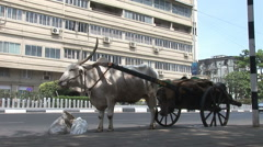 Ox and cart wait in a street in Mumbai Stock Footage