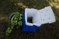 Vege cooler - stock photo