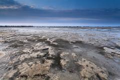 mud at low tide on North sea coast - stock photo