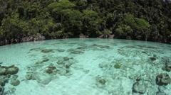Shallow Lagoon and Limestone Island Stock Footage