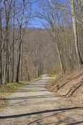 Quiet Rural Road an a Mountain Wilderness Stock Photos