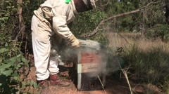 Beekeeper opening up beehive or apiary Stock Footage
