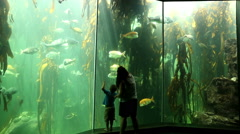 Mother and child looking at fish,Two Oceans Aquarium, Cape Town Stock Footage