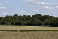 English Countryside, Holmer Green, Buckinghamshire - stock photo