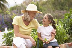 Grandmother And Granddaughter Working In Vegetable Garden Stock Photos
