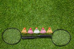 Two badminton rackets with color shuttlecocks - stock photo