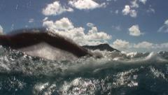 Open water swimming in ocean Stock Footage