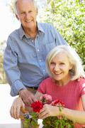 Mid age woman  and father in garden - stock photo