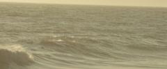 Roll Tide Stock Footage