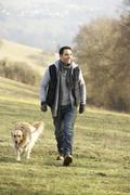 Man walking golden retriever in the country Stock Photos