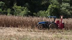 Farmer harvesting corn Stock Footage