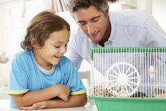 Father And Son Watching Pet Hamster - stock photo