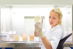 Scientist observing petri dish. Stock Photos