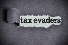 tax evaders word under torn black sugar paper - stock photo