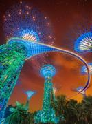 The Supertree at Gardens by the Bay, Singapore Stock Photos