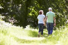 Rear View Of Senior Couple Walking In Summer Countryside Stock Photos