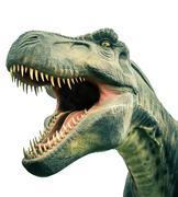 head ancient dinosaur tyrannosaurus - stock photo