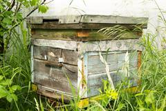 Single Traditional Wooden Beehive Stock Photos