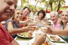 Group Of Senior Friends Enjoying Meal In Outdoor Restaurant - stock photo