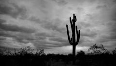 Ominous Desert BW - stock footage