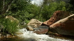 Water flowing in a cool mountain stream Stock Footage