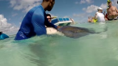Antigua Caribbean Sea 222 crew member plays with a stingray Stock Footage