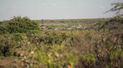 Small village in savannah, Kenya, Africa, long shot Stock Footage