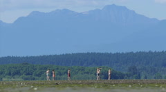 Teenage Boys Playing Catch At The Beach During Low Tide Stock Footage