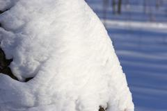 nice snowdrift on the tree - stock photo