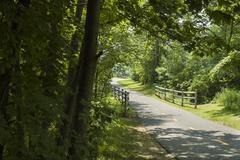 Quiet bike path - stock photo