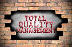 Hole at the brick wall with total quality management caption inside - stock illustration