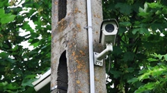 Security camera on post Stock Footage