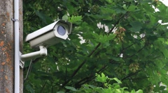 Security camera hidden through branches Stock Footage