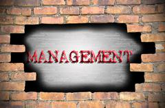 Hole at the brick wall with management caption inside - stock illustration