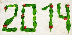 Digits 2014 made of leafage on a coral sandy beach Stock Photos