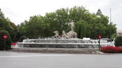 Wide shot of statue and fountain Stock Footage