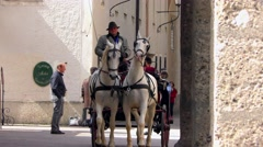 4K footage of a traditional horse-drawn carriage in Salzburg, Austria Stock Footage