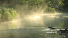 morning coolness - stock footage