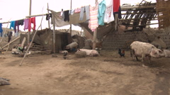 Rural Peru scenes Stock Footage