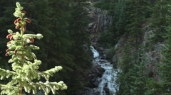 Natural waterfall, Colorado beauty - stock footage