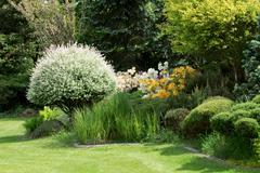 Beautiful spring garden design with rhododendron - stock photo
