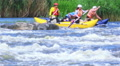 Catamaran, boat,with people on rough river. Rafting team   HD Footage