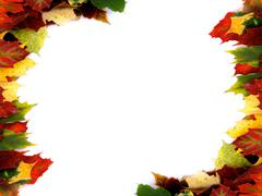 Two Corner Borders of Multi Colored Autumn Maple Leaf isolated on White backgrou Stock Photos