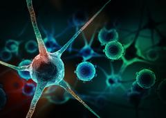 Realistic rendering of neurone - on the green background - stock illustration