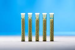 Five small glass tubes with homeopathy globules, blue background Stock Photos