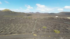 Aerial video footage of the La Geria vineyard on black volcanic Stock Footage